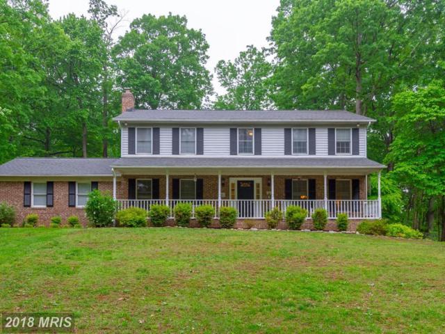 5178 South Hill Drive, Warrenton, VA 20187 (#FQ10241768) :: The Hagarty Real Estate Team