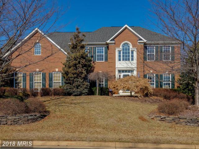 5062 Oakmont Drive, Warrenton, VA 20187 (#FQ10249898) :: Colgan Real Estate