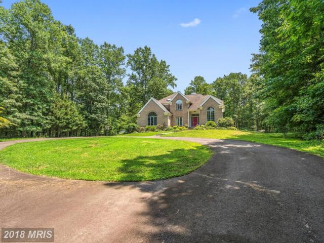 10375 Welhams Lane, Marshall, VA 20115 (MLS #FQ10261796) :: Explore Realty Group