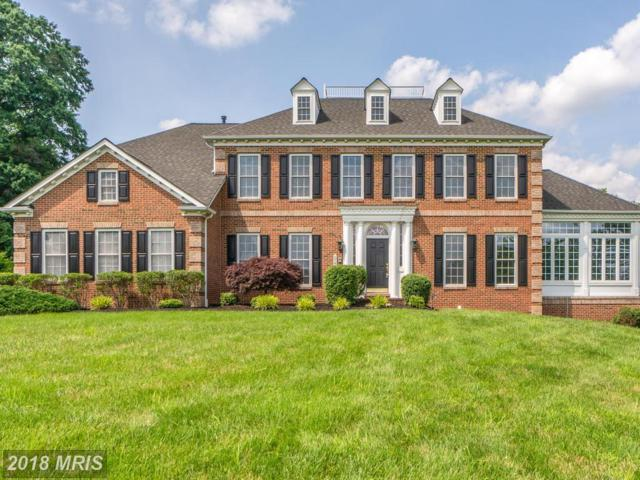 6945 Tanglewood Drive, Warrenton, VA 20187 (#FQ10264962) :: The Gus Anthony Team