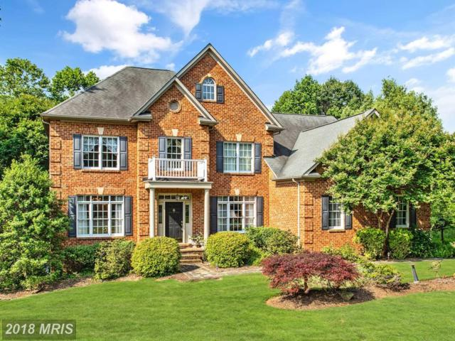 7580 Cannoneer Court, Warrenton, VA 20186 (#FQ10276767) :: Samantha Bendigo