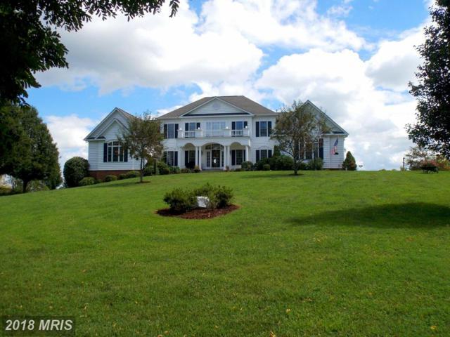 8371 Leeton Lake Drive, Warrenton, VA 20186 (#FQ10303574) :: Colgan Real Estate