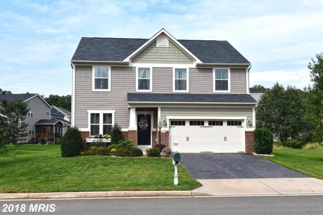 3949 Lake Ashby Court, Warrenton, VA 20187 (#FQ10346540) :: Samantha Bendigo