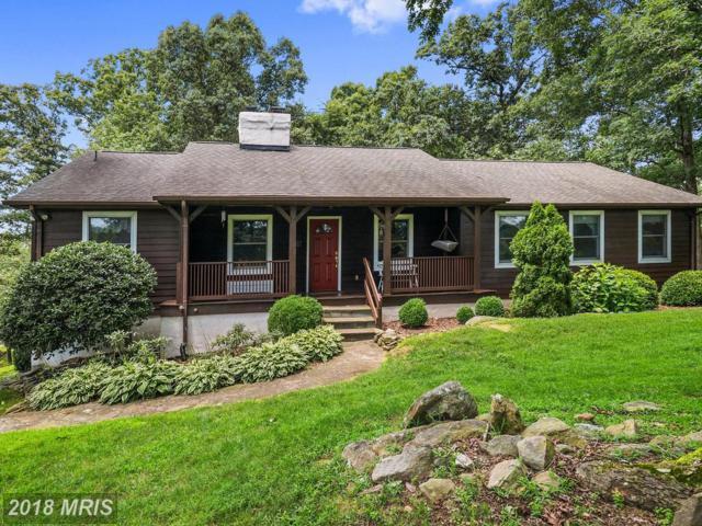 4633 Piney Branch Lane, The Plains, VA 20198 (#FQ10352112) :: Keller Williams Pat Hiban Real Estate Group