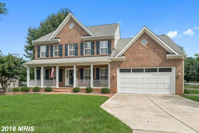 121 English Chase Lane, Warrenton, VA 20186 (#FQ10352764) :: Samantha Bendigo