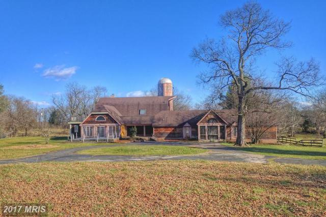 8747 Country View Drive, Catlett, VA 20119 (#FQ9849050) :: LoCoMusings