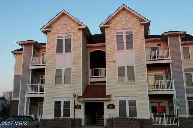 6163 Willow Place #202, Bealeton, VA 22712 (#FQ9981493) :: LoCoMusings