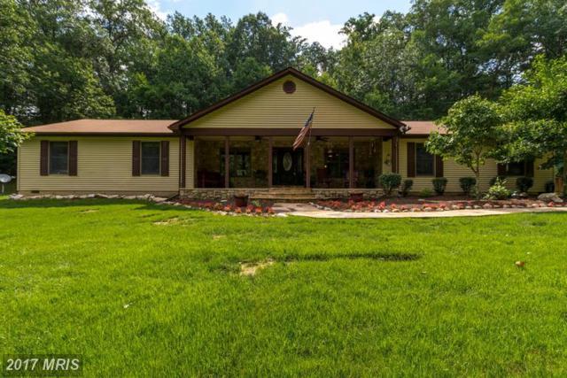 6687 Thumb Run Road, Marshall, VA 20115 (#FQ9982956) :: LoCoMusings