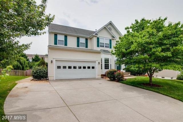 792 Black Sweep Road, Warrenton, VA 20186 (#FQ9986424) :: Colgan Real Estate