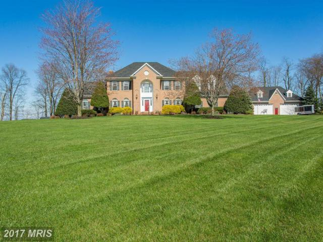 11830 Weller Hill Drive, Monrovia, MD 21770 (#FR10000976) :: LoCoMusings