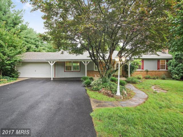 13986 W Annapolis Court, Mount Airy, MD 21771 (#FR10001833) :: Pearson Smith Realty