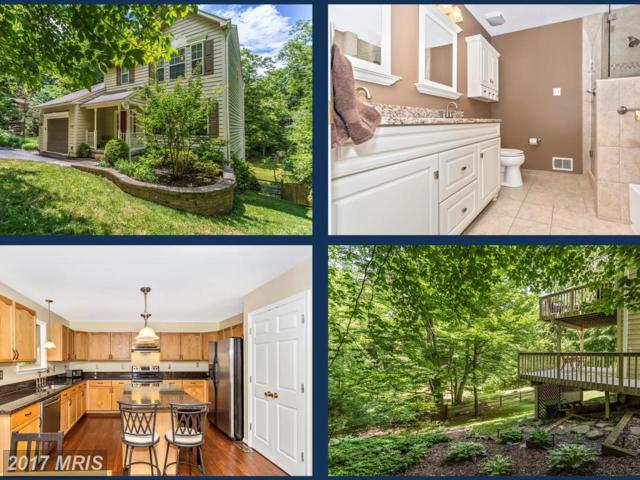 6806 Balmoral Court, New Market, MD 21774 (#FR10004046) :: Pearson Smith Realty
