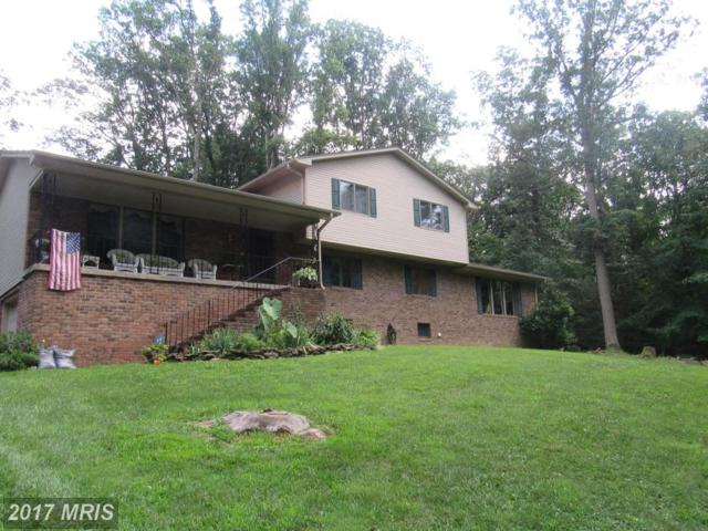 6187 Viewsite Drive, Frederick, MD 21701 (#FR10007539) :: Pearson Smith Realty