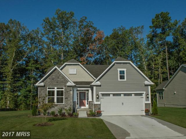 3 Dargon Quarry Lane, Brunswick, MD 21716 (#FR10012854) :: A-K Real Estate