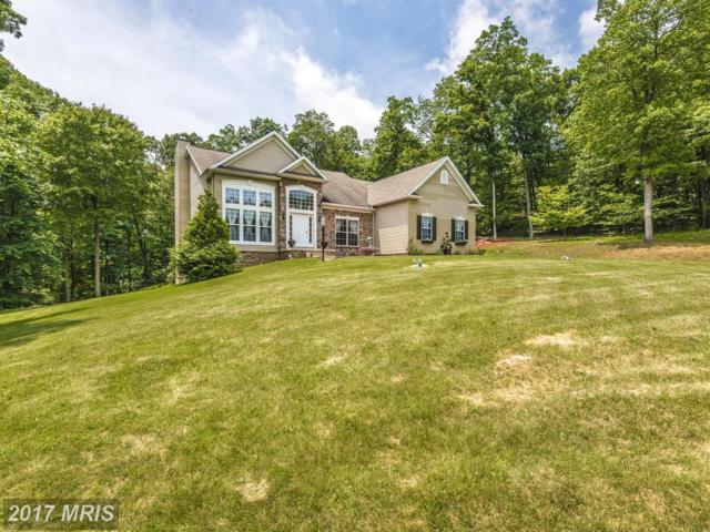 12906 Tower Road, Thurmont, MD 21788 (#FR10015527) :: LoCoMusings