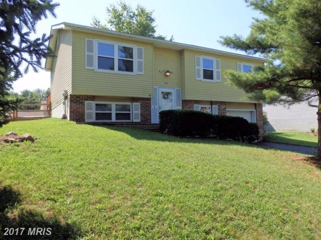 492 Hobnail Court, Frederick, MD 21703 (#FR10016344) :: Pearson Smith Realty