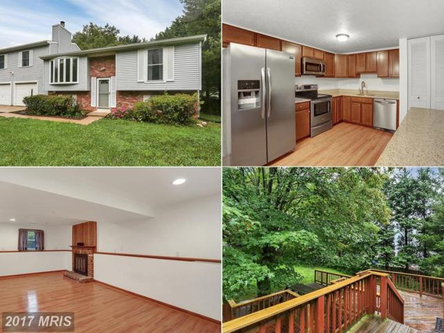 4509 Granite Drive, Middletown, MD 21769 (#FR10020955) :: ReMax Plus