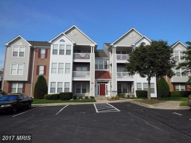 902 Blueleaf Court E, Frederick, MD 21701 (#FR10024596) :: Pearson Smith Realty