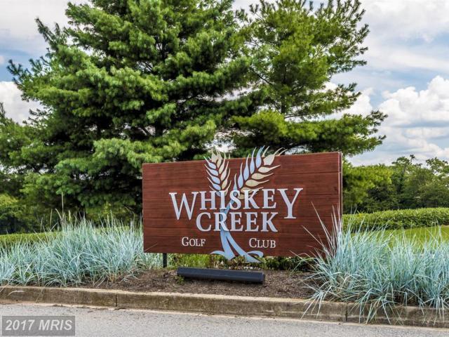 10505 Whiskey Road, Ijamsville, MD 21754 (#FR10029439) :: The Katie Nicholson Team