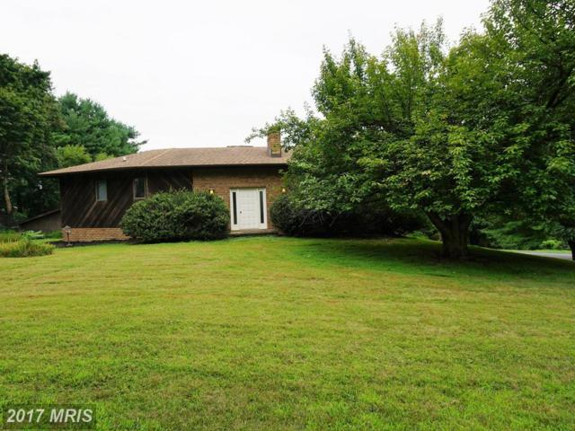 6199 Viewsite Drive, Frederick, MD 21701 (#FR10029697) :: Pearson Smith Realty