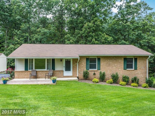 14112 Clearwood Court, Mount Airy, MD 21771 (#FR10032532) :: ReMax Plus