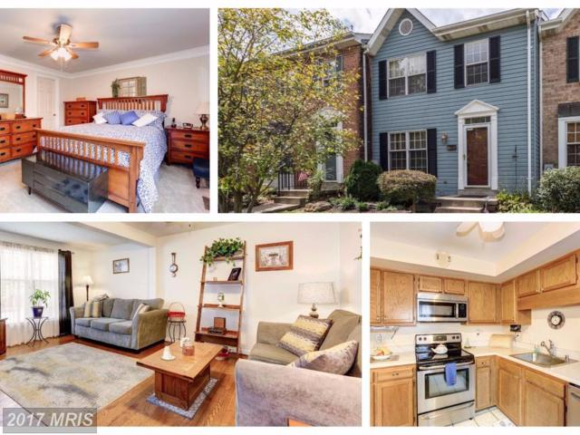 7986 Windsail Court, Frederick, MD 21701 (#FR10033392) :: LoCoMusings