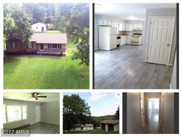 4454 Mill Bottom Road, Mount Airy, MD 21771 (#FR10033771) :: The Sebeck Team of RE/MAX Preferred