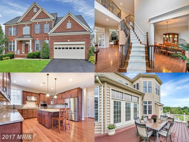 4102 Celtic Way, Frederick, MD 21704 (#FR10034217) :: ReMax Plus