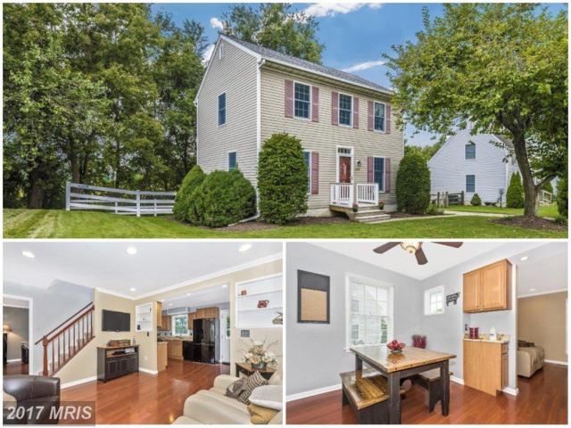 425 Navaho Drive, Frederick, MD 21701 (#FR10036331) :: The Bob Lucido Team of Keller Williams Integrity