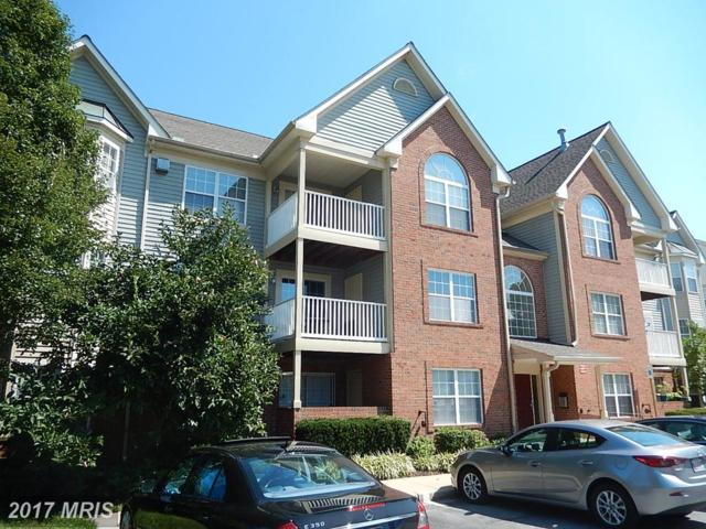 6512 Springwater Court #4301, Frederick, MD 21701 (#FR10040434) :: Pearson Smith Realty