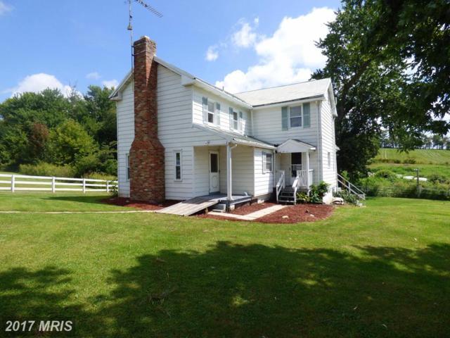5733 Tuscarora Road, Tuscarora, MD 21790 (#FR10044415) :: Pearson Smith Realty