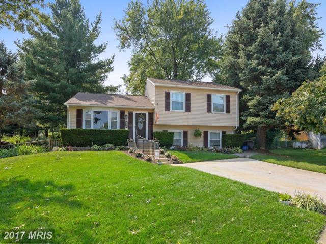 265 Longford Court, Frederick, MD 21702 (#FR10049302) :: Pearson Smith Realty