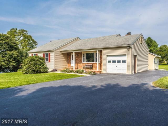 8988 Grape Creek Road, Walkersville, MD 21793 (#FR10049418) :: Pearson Smith Realty