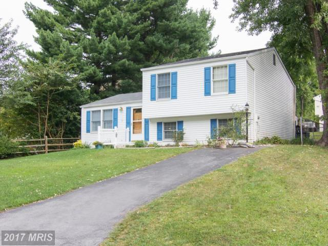 115 Deerfield Place, Frederick, MD 21702 (#FR10050547) :: Pearson Smith Realty