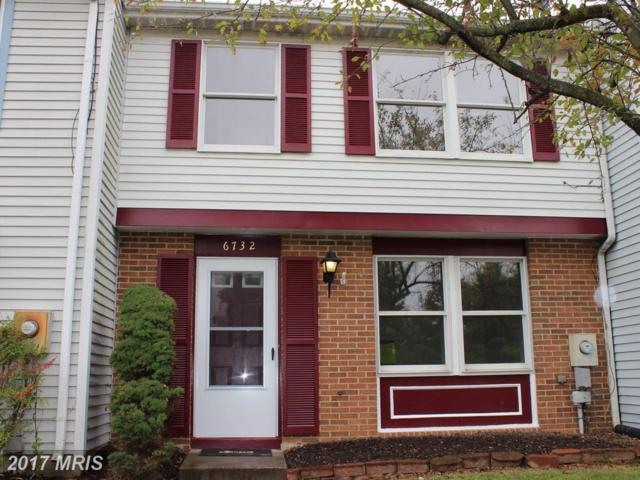 6732 Fallow Hill Court, Frederick, MD 21703 (#FR10051322) :: Pearson Smith Realty