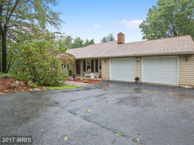 11204 Jon Court, Ijamsville, MD 21754 (#FR10052847) :: Pearson Smith Realty