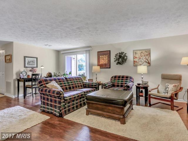 823 Stratford Way F, Frederick, MD 21701 (#FR10054460) :: Pearson Smith Realty