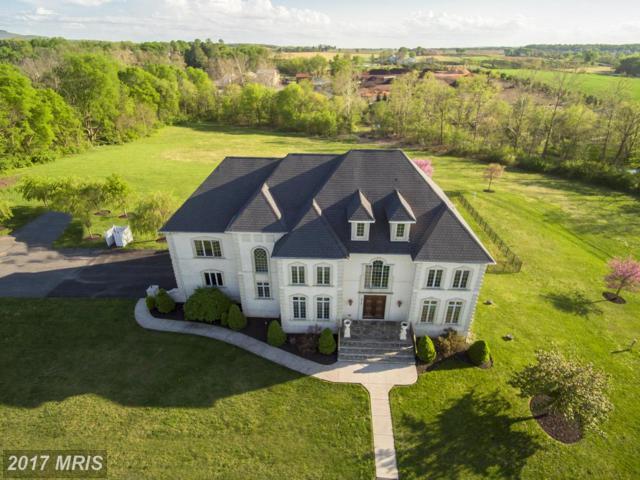 6779 Keller Lime Plant Road, Frederick, MD 21701 (#FR10056788) :: A-K Real Estate
