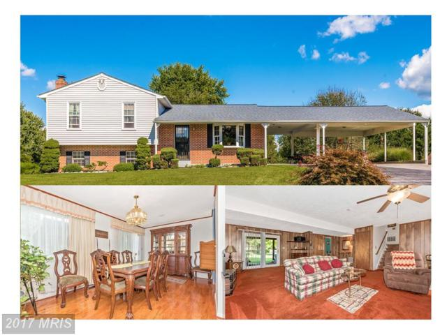11018 Horseshoe Drive, Frederick, MD 21701 (#FR10057037) :: LoCoMusings