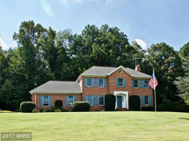 8801 Links Bridge Road, Thurmont, MD 21788 (#FR10064349) :: Ultimate Selling Team
