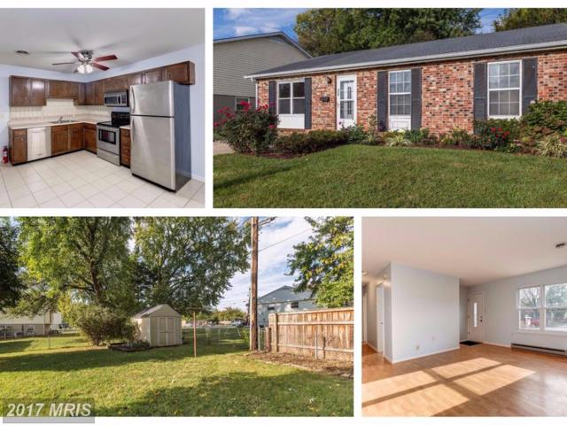 425 Banksia Drive, Frederick, MD 21701 (#FR10069721) :: LoCoMusings