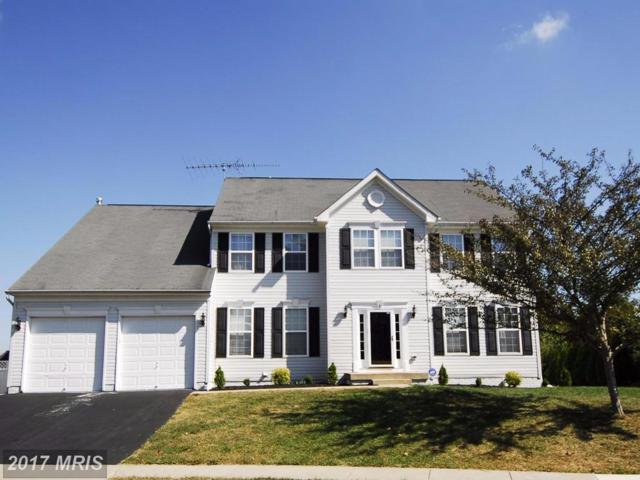 8 Pleasant Acres Drive, Thurmont, MD 21788 (#FR10072797) :: Pearson Smith Realty