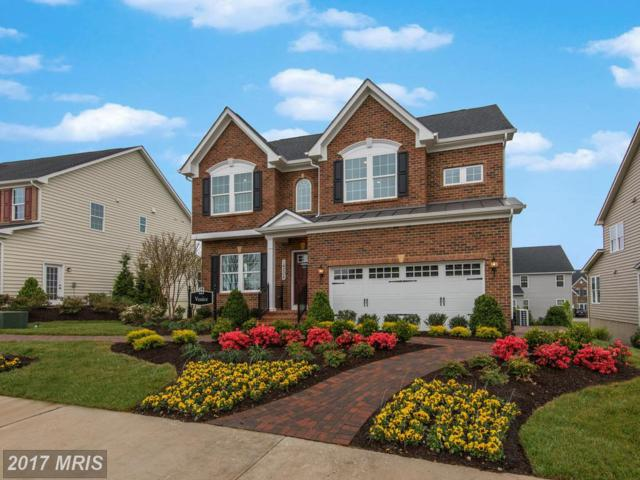411 Conundrum Terrace, Frederick, MD 21702 (#FR10074827) :: LoCoMusings