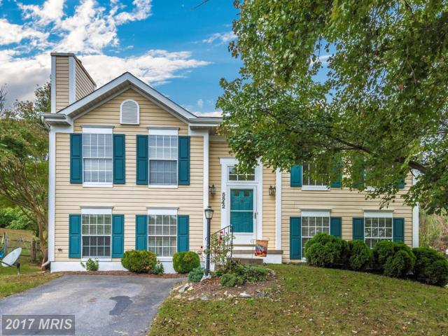 5542 Wicomico Drive, New Market, MD 21774 (#FR10079966) :: Ultimate Selling Team