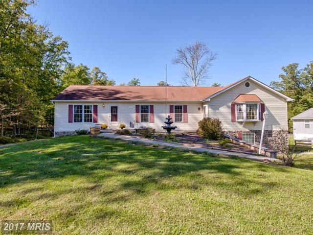 7128 Linganore Road, Frederick, MD 21701 (#FR10081422) :: The Sebeck Team of RE/MAX Preferred