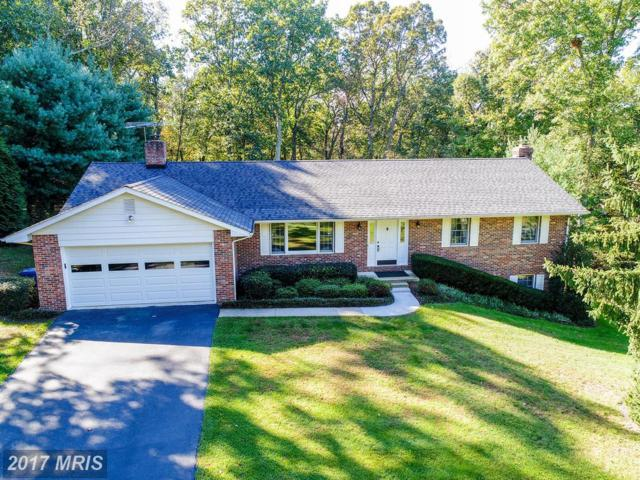 13415 Brandon Manor Court, Mount Airy, MD 21771 (#FR10083868) :: Ultimate Selling Team