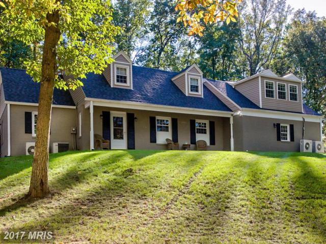 12177 Overlook Drive, Monrovia, MD 21770 (#FR10084886) :: ReMax Plus