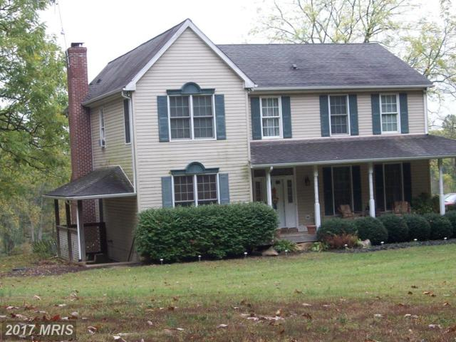10121 Pine Tree Road, Woodsboro, MD 21798 (#FR10085103) :: Charis Realty Group