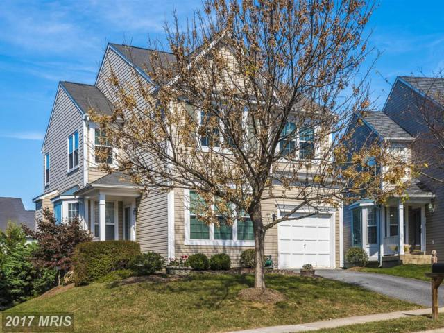 9542 Kingston Place, Frederick, MD 21701 (#FR10087416) :: LoCoMusings
