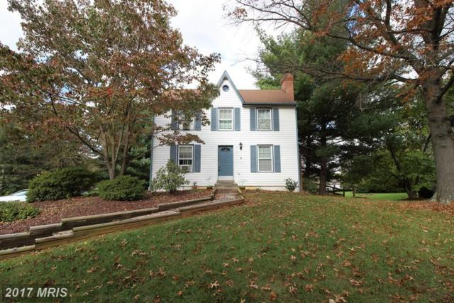 167 Wicomico Court, New Market, MD 21774 (#FR10093043) :: Pearson Smith Realty
